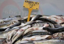 Van Gölü'nün inci kefali değer kazandı