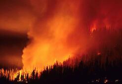 Orman yangınları yüzünden okullar kapatıldı