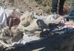 Polis, aslan figürlü kaya parçası için 3 gün nöbet tuttu