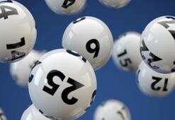 9 Eylül On Numara sonuçları açıklandı MPİ On Numara çekiliş sonuç sorgulama