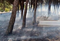 Mezarlık alev alev yandı