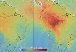 Amazonlarda karbonmonoksit seviyesi arttı