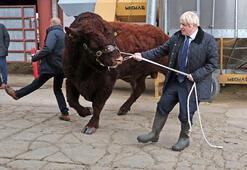 İskoç mahkemesi: Johnsonın parlamentoyu kapatması hukuksuz