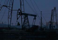 ABDnin ham petrol stokları azaldı