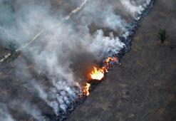 Brezilyada 10 günde 8 bin yangın çıktı