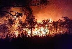 Son dakika| Ekipler bölgede Alev alev yanıyor