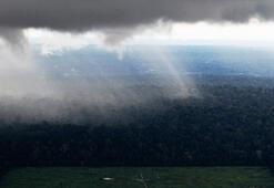 ABD ve Brezilya Amazon Ormanlarına gözünü dikti