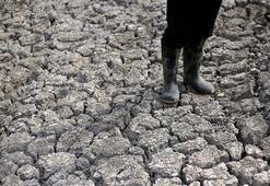 Hondurasta kuraklık korkunç boyutta