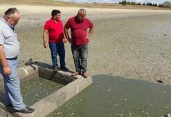 Eğer su verilmezse binlerce balık ölmeye devam edecek