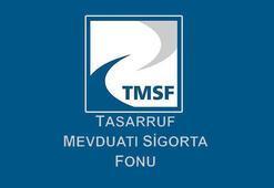 TMSFden stratejik satış