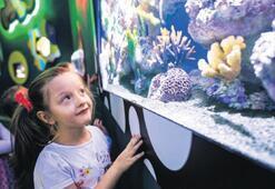 Aquarium 1 yaşında