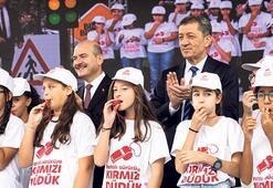 Trafik eğitim TIR'ı Türkiye'yi dolaşacak