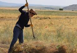 CHP, çiftçi borçlarının ertelenmesini istedi