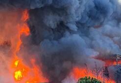 Tuzla Organize Sanayi Bölgesinde korkutan yangın