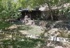 Ceviz toplarken ağaçtan düşen kişi hayatını kaybetti