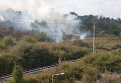 Nükleer Araştırma Merkezinde ağaçlık alanda yangın
