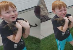 Yavru köpeğine kavuşan çocuğun sevinç gözyaşları