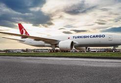 THYnin kargo markası uçaklar ile 19 ayda 169 lüks araç taşıdı