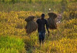 Yüzlerce çiftçi Yeni Delhiye yürüyor