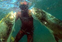 Bu balıkları zıpkınla böyle avladılar