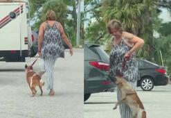 Köpeğine eziyet eden kadın gözaltına alındı
