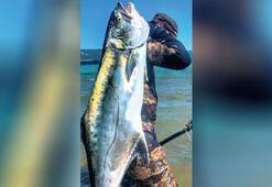 23 kiloluk liçayı zıpkınla avladı