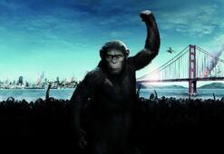 Maymunlar Cehennemi: Başlangıç filminin konusu nedir