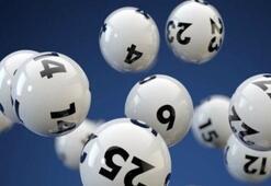 On Numara çekiliş sonuç sorgulama (MPİ 23 Eylül On Numara sonuçlarında hangi numaralar kazandırdı)