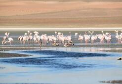 Kuş cenneti Düden Gölü kurudu