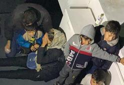Datçada 37 kaçak göçmen yakalandı