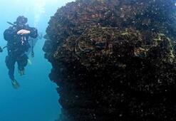 Van Gölünde dünyanın en büyük mikrobiyalitleri keşfedildi