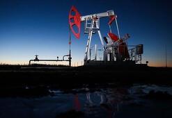 ABDnin ham petrol stokları yükseldi