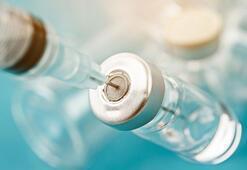 Türkiyedeki aşıların içinde cıva ve alüminyum var mı