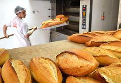 Her gün 5 milyon ekmek çöpe gidiyor