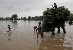 Hindistanda felaketin bilançosu ağırlaşıyor