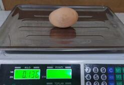 Tavuk, 136 gramlık yumurta yumurtladı
