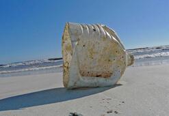 Plastik atıklar Erişilemeyen Adaya erişti