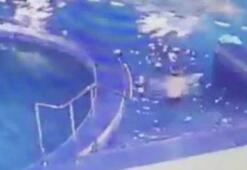 Küçük çocuk yüzme dersinde boğuldu
