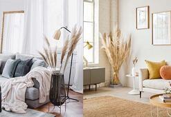 Evinize doğallık katacak pampas otu ile dekorasyon nasıl yapılır
