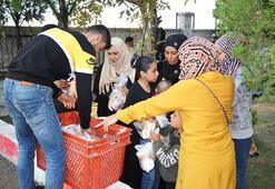 Ayvalıkta 91 kaçak göçmen yakalandı