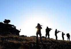 İçişleri Bakanlığı açıkladı 9u gri listede 184 terörist etkisiz hale getirildi