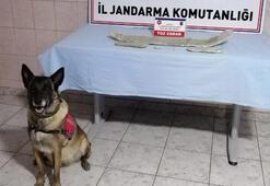 Kayseride uyuşturucuya 2 gözaltı
