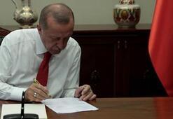 Erdoğandan Yeniden yollara düşme vakti paylaşımı