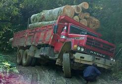 Tomruk yüklü kamyon yan yattı