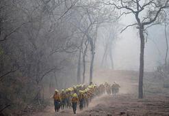 Amazondaki yangınlar yağışlarla söndü