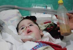 Son dakika | İki kez kalbi duran Alperenden acı haber