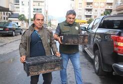 Bunu yapan yandı Cezası 6 bin lira