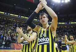 Fenerbahçe Bekoya Vesely müjdesi