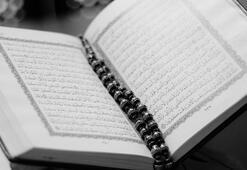 Fetih Suresi okunuşu ve meali Fetih Suresi kaç ayettir