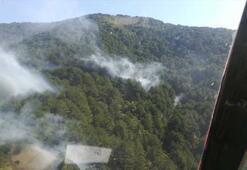 Balıkesirdeki orman yangını kontrol altına alındı